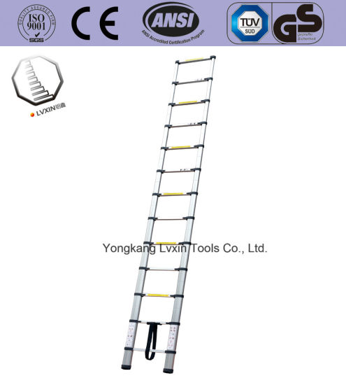 Multipurpose Telescopic Ladder of 12steps with En131 pictures & photos