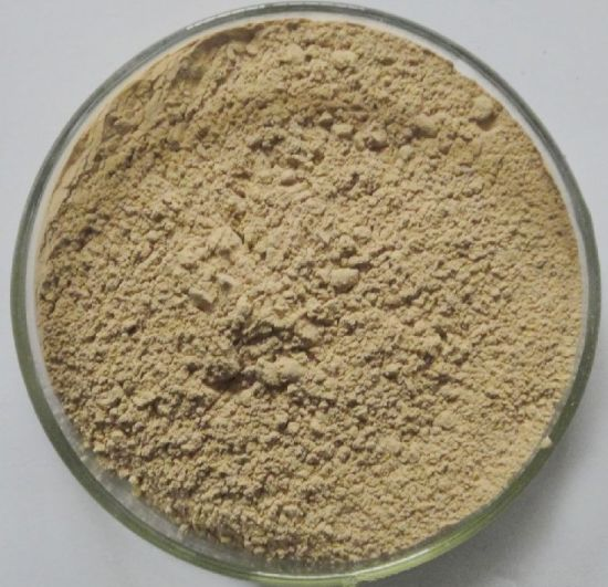 Hawthorn Extract /Hawthorn Berry Maslinic Acid Powder Manufactured in China