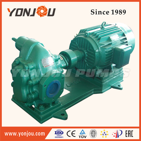 Hot Sale Lube Oil Transfer Gear Pump pictures & photos