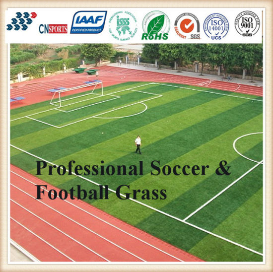 Ce Certificate Artificial Grass for Soccer and Football Playground pictures & photos