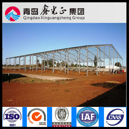 Customized Design of Steel Structure Warehouse (SS-331)