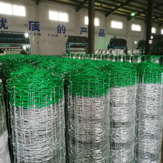 Galvanized Wire Mesh Fences for Cattle/Hinge Joint Cattle Fence/Fence for Cattle & Sheep