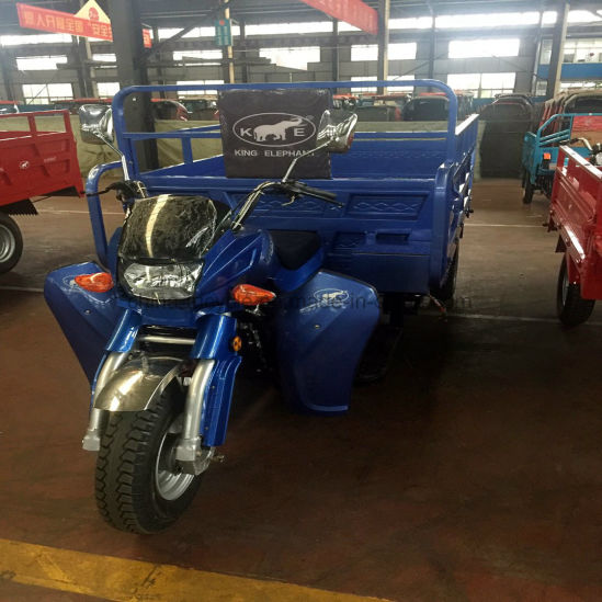Factroy Gasoline Three Wheel Motorcycle /Cargo Trike/3 Wheeler Car /Motorbike pictures & photos