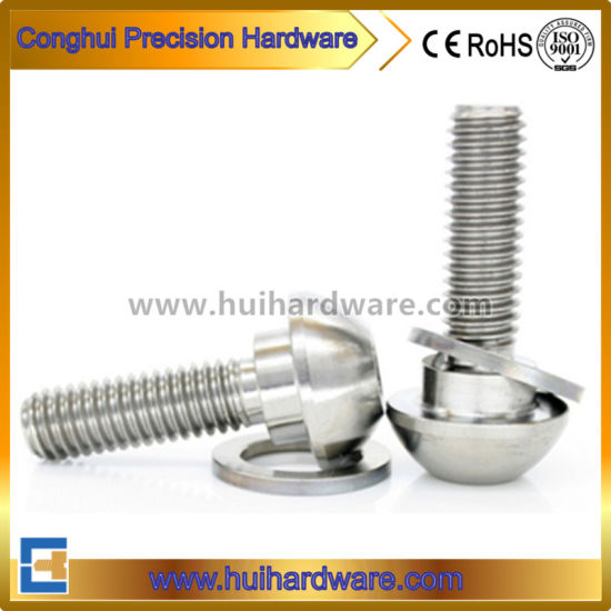 China Cusomized Titanium Hex Socket Step Bolts with High Quality