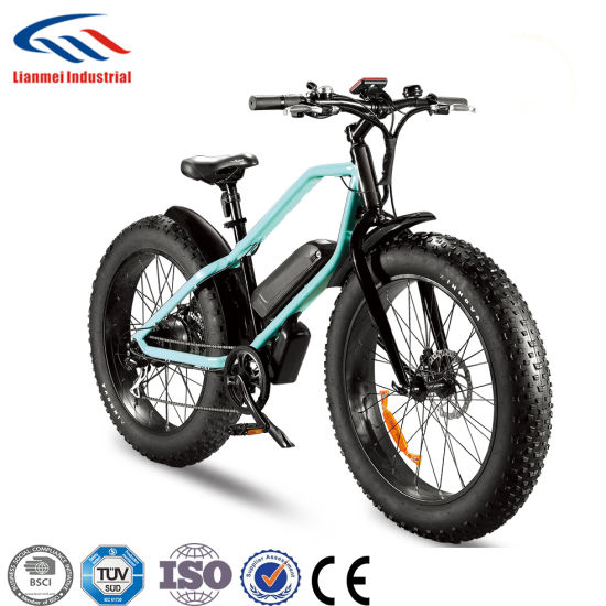 Fat Tyre Electrical Bikes Lmtdf-41L