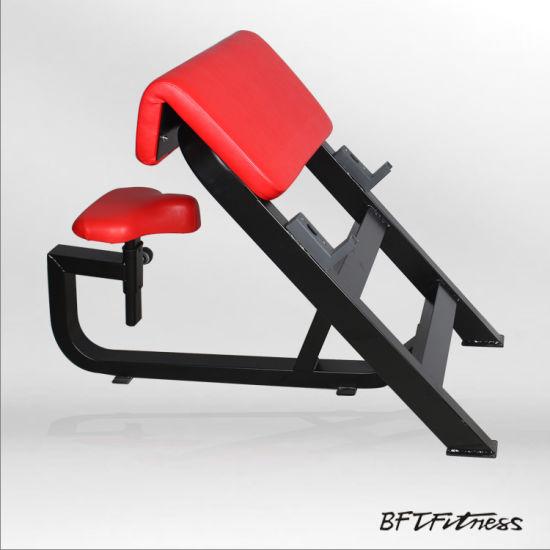 Strange Arm Curl Bench Scott Bench Bicep Training Bench Bft 3033 Pdpeps Interior Chair Design Pdpepsorg
