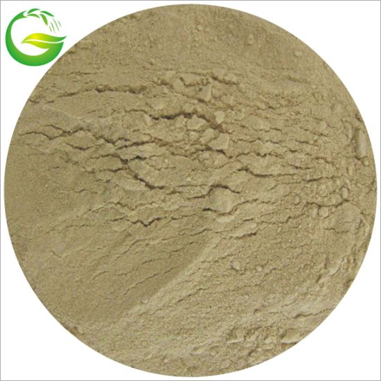 Fish Meal Plant Agriculture Organic Fertilizer Fish Meal Protein