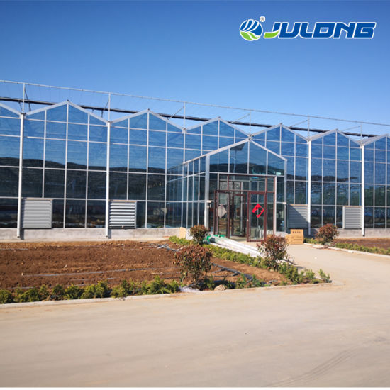 Commercial Hydroponics Vertical Vegetables System Equipment Multi Span Glass Greenhouse