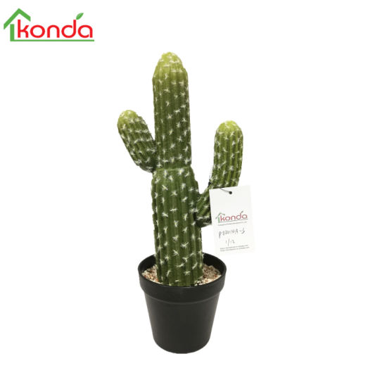 Artificial Tropical Desert Plant Simulation Cactus Bonsai Decorative Plants