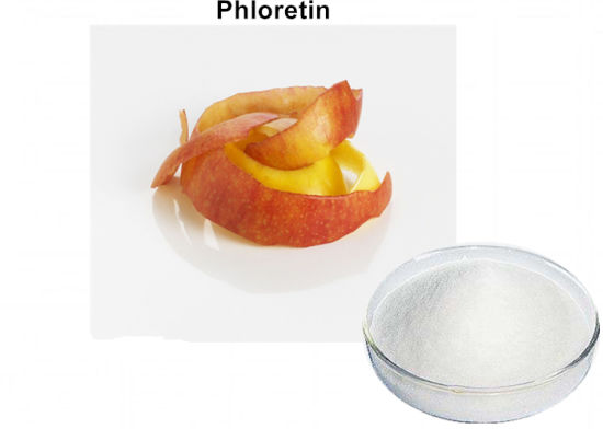 98% Phloretin Powder for Cosmetic