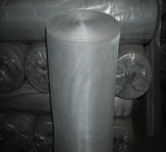 Electro Galvanized Wire Netting for Window Screen pictures & photos