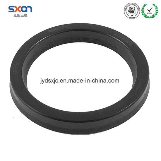China Different Types Seal of Pump Valves Oil Seals - China