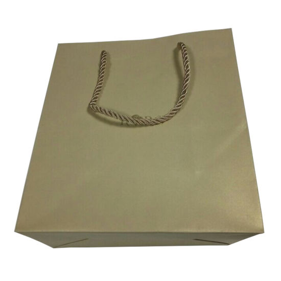 Garment Paper Shopping Bags (FP11054) pictures & photos