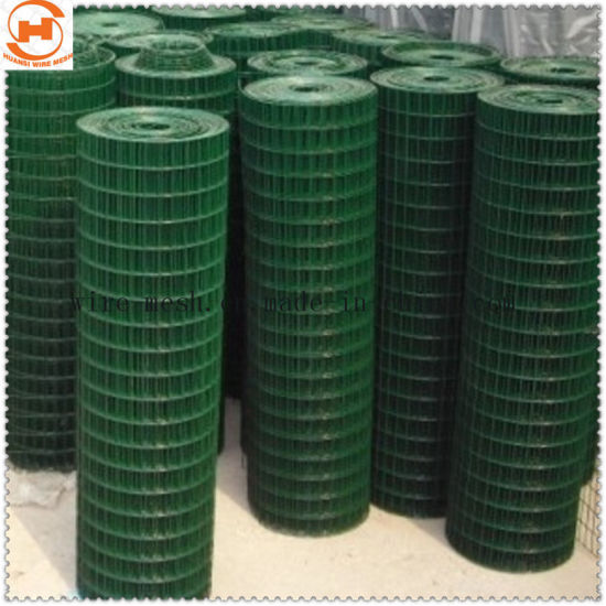 PVC Coated Welded Wire Mesh/ Welded Square Wire Mesh pictures & photos