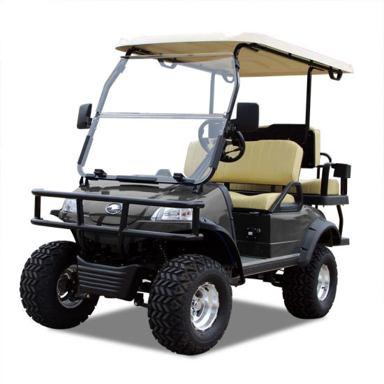 Electric Buggy Golf Cart Hunting Car (DEL2022D2Z, black)