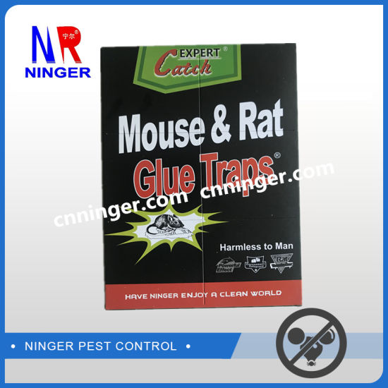High Quality Rat and Mouse Glue Pad Factory pictures & photos