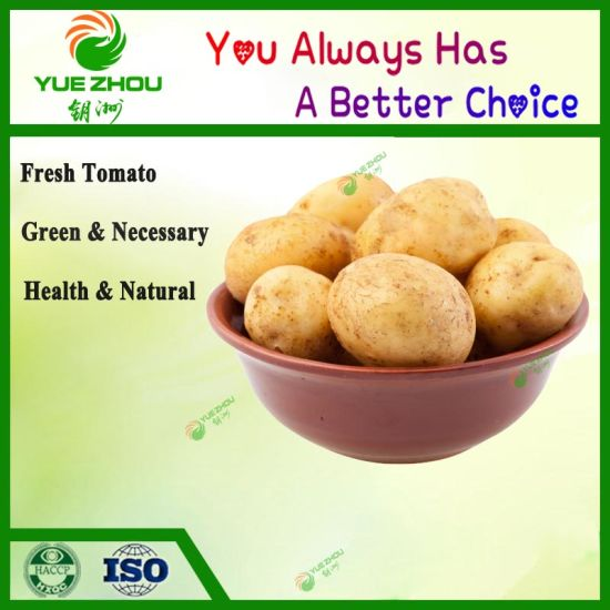 2019 New Crop Fresh Potato with Cheap Price pictures & photos