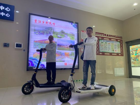 Balance Scooter, Electric Mobility Scooter for Adult, 250W, 25km Maximum Speed, 35km Range