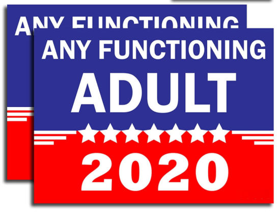 """Any Functioning Adult 2020 18""""X 24"""" Double Sided Print Funny Novelty Yard Sign"""