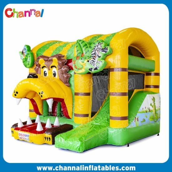 Jungleworld Inflatable Bouncer Combo for Kids CB04 pictures & photos