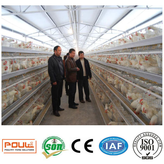 Hot Galvanized Poultry Equipment Chicken Layer Cage International Standard pictures & photos