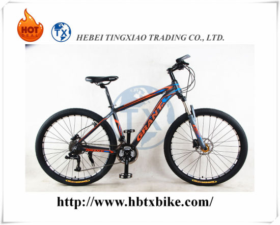 Good Design Hot-Sell 30 Speeds Mountain Bike pictures & photos