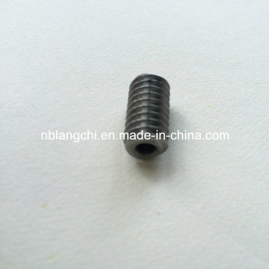 Transmission Customized Steel Worm Gear Endless Screw Worm pictures & photos