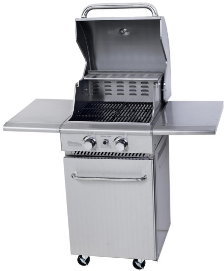 Deluxe Stainless Steel 2 Burner Gas BBQ Grill for Germany