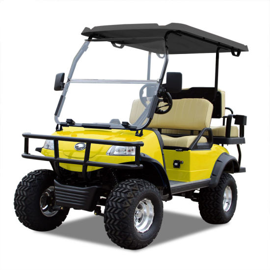 Electric Buggy Golf Cart Hunting Car (DEL2022D2Z, Yellow) Blackroof