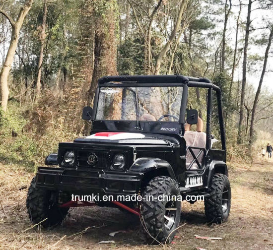 Mini Jeep Utv 4×4
