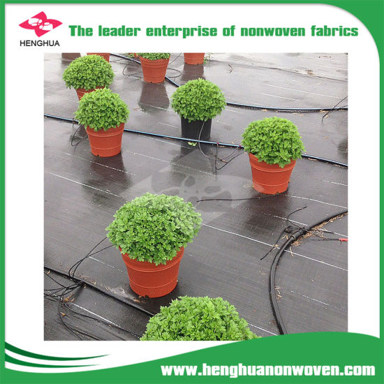 China Non Woven Cloth Ground Cover Sheet Weed Barrier Landscape