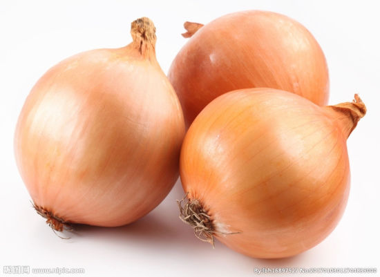 China New Crop Yellow Onion for Exporting