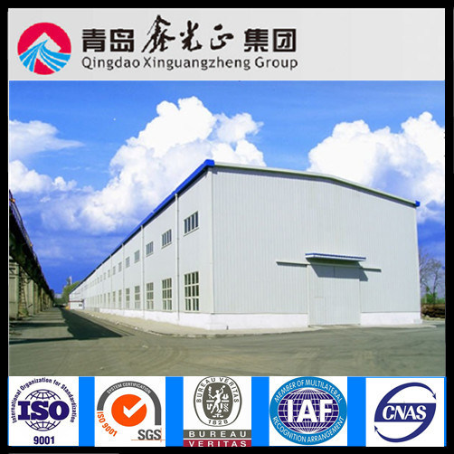 Customized Design Steel Structure Warehouse (SS-293)