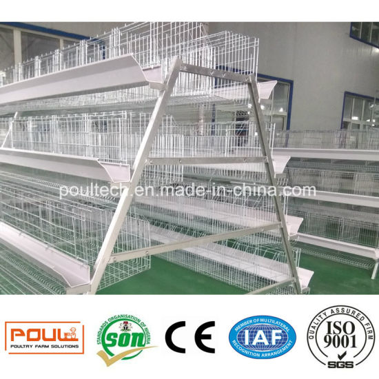 Hot DIP Galvanized Wire Mesh Layer Cage Broiler Cage Pullet Cage pictures & photos
