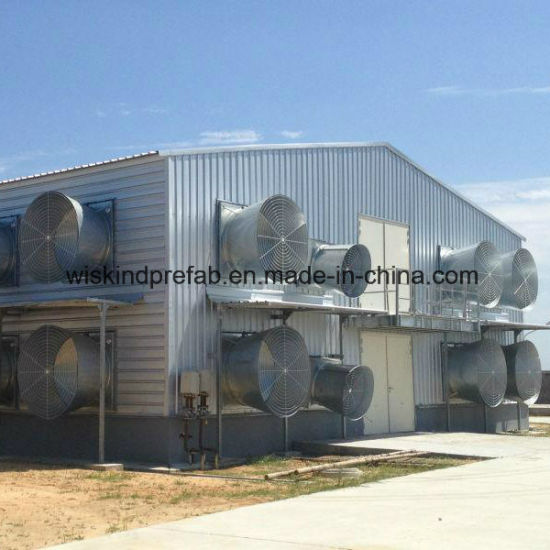 Low Cost Professional Design Chicken Farm pictures & photos