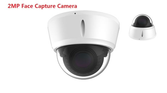 1080P Infrared Face Capture Access Control Detector IP Dome Camera