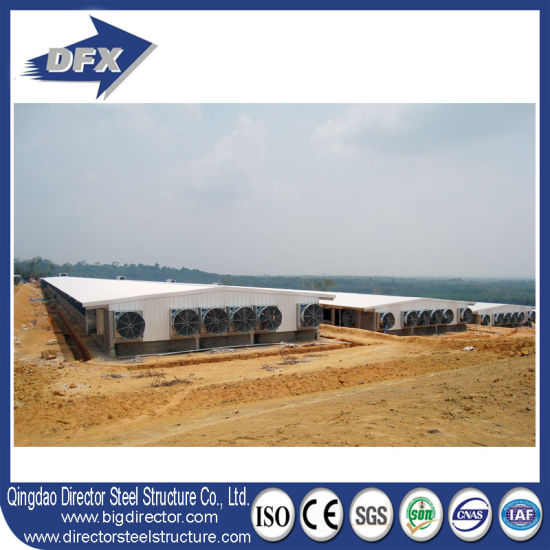 Agriculture Steel Structure Shed Building Poultry Farm pictures & photos