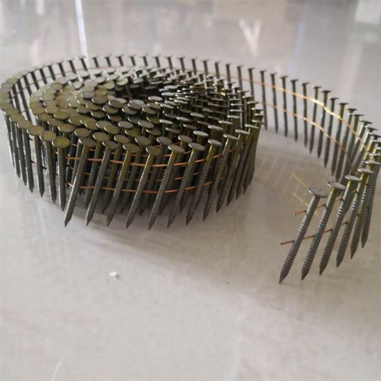 China Best Quality Roofing Coil Nail For Construction Use China Roofing Nail Galvanized Nail