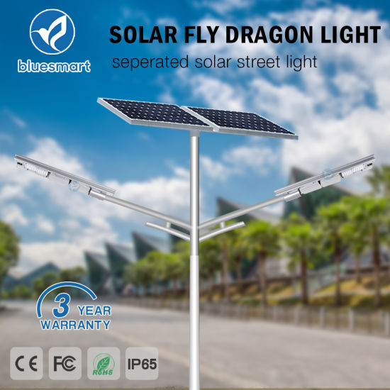 Bluesmart 100W IP65 Solar LED Street Lightings with Remote Control pictures & photos