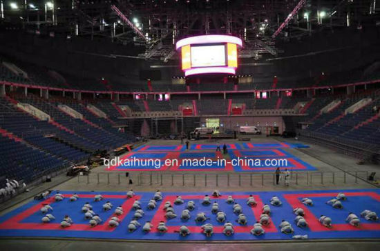 Interlocking Floor Mat, Martial Arts MMA Mats, Karate Mats, Tkd Mats