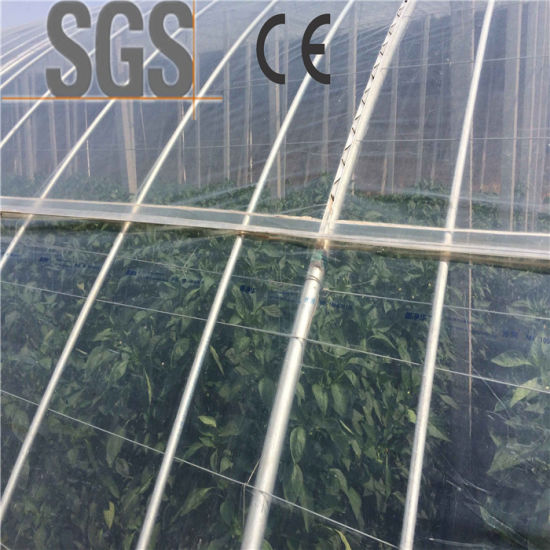 Transparent Agriculture Plastic Mulch Film Agriculture Mulching Film pictures & photos