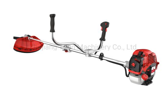 Powerful Gas Grass Cutter with Patent From Professional Manufacturer (TT-BC520)