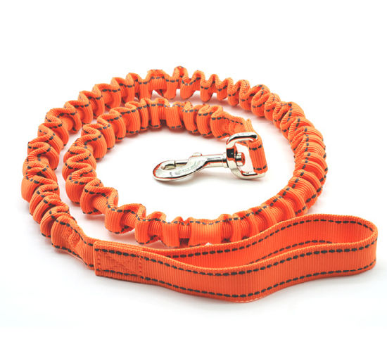 Elasticity Design Polyester Dog Leashes for Running pictures & photos
