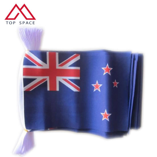 Economy Blue Red Banner Bunting New Zealand Flag String pictures & photos