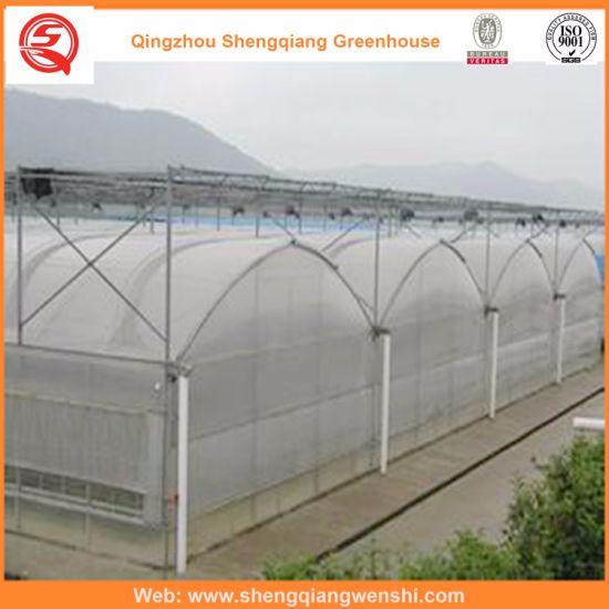 Agriculture Film Greenhouse for Vegetables/Garden pictures & photos