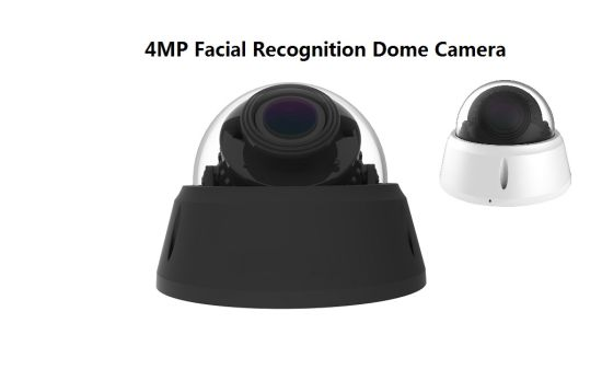 4MP IR Infrared Face Recognition Access Control Detector IP Dome Camera