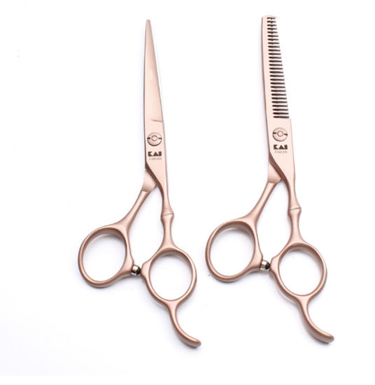 Professional 6 Inch 9cr Stainless Steel Barber Scissors Hairdressing Scissors