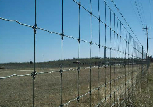 High Tensile Steel Farm Fence Ring Fixed Knot Field Fence Grassland Fence Deer Fence Anping Factory
