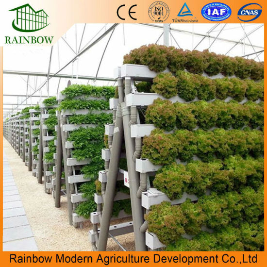 Terrific Hydroponics And Commercial Greenhouse For Desert And Semi Arid Home Interior And Landscaping Oversignezvosmurscom