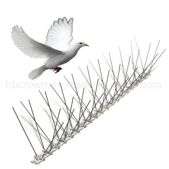 Humane Bird Repellent Anti Pigeon Durable Stainless Steel Bird Spikes